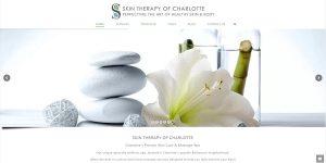 skin informational WordPress site